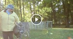 She saved this deer's life but what the deer does to repay the favor? It will warm your heart!