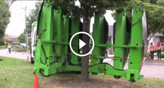 Tree Transplant Engine