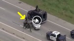 WILD CHASE: Texas Cops Use SWAT To End Chase. This Is Crazy!!