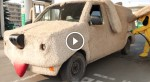 CarDog Helps Animals In A Very Unusual And Cute Way