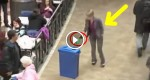 Woman Throws a Bottle Into The Recycling Bin, Second After She Can't Believe What Is Going On. AMAZING!