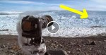 They Took A Camera To A Remote Area. What They Caught? Terrifying.