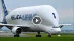 This Is The Airbus Beluga, And It's INCREDIBLE