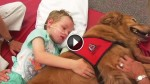 What This Dog Does For His Sick Little Human Is So Profoundly Beautiful. It's Hard Not To Cry