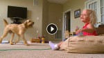 Parents Hook Her Up To A Machine To Keep Her Alive. Now Watch What The Dog Does…