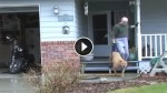 People Often Stare And Laugh At What This Guy Does With His Dog. But When You See Why …OMG?!
