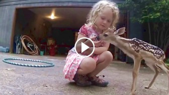 Little Girl is Playing in Her Yard, Then An Unexpected Visitor Comes By… ADORABLE!