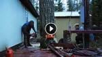 Lumberjack Does Something Amazing To Avoid Damaging Property. WOW!